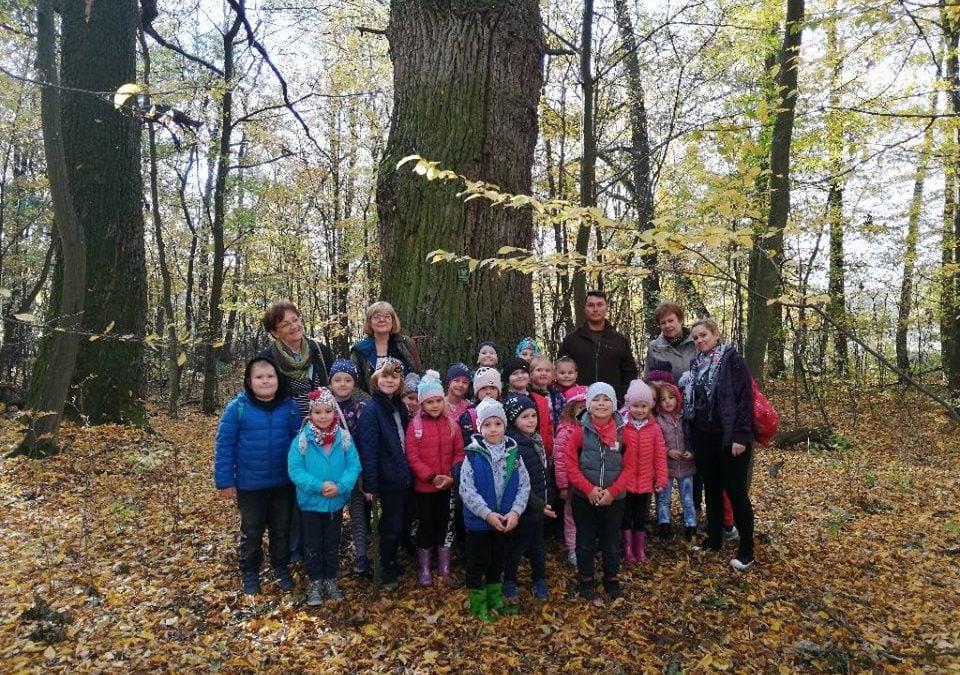 Wycieczka Tygrysków do Nadleśnictwa Zwierzyniec 18.10.2019